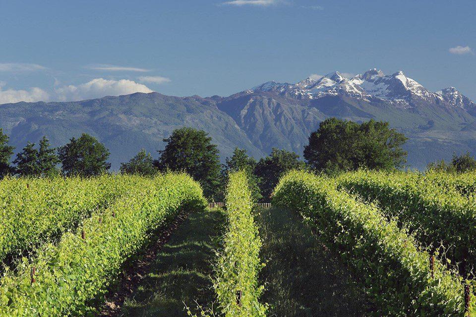 Bosco albano bagno alcione forte dei marmi sabato 15 luglio 2017 god save the wine - Bagno flora forte dei marmi ...